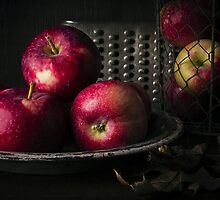 Apple Harvest by Edward Fielding