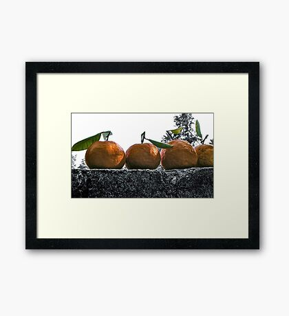 A Wall Of Tangerines 1 Framed Print