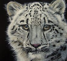 Snow White - snow leopard  by Anne Zoutsos