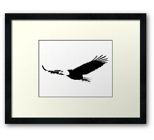 Soaring Bald Eagle. Bald Eagle In Flight. Wildlife Digital Engraving Image. Framed Print