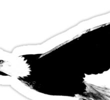Soaring Bald Eagle. Bald Eagle In Flight. Wildlife Digital Engraving Image. Sticker