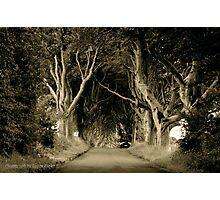 The Dark Hedges of Stranocum, Ballymoney, County Antrim Photographic Print