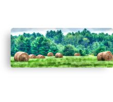Maine Countryside Canvas Print