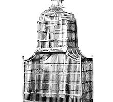 Antique Vintage Birdcage. Antique Digital Engraving Vintage Image. by digitaleclectic