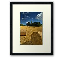 Nature Does Nothing In Vain Framed Print