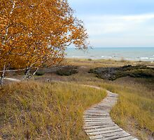 Scenic Path on Lake Michigan by sketchpoet