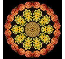 Nature Kaleidoscope 005 Photographic Print