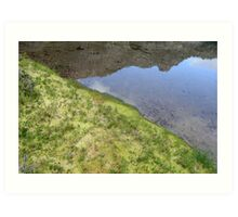 the green, green grass of home Art Print