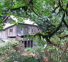 Just a Grist Mill by irishbarc