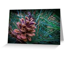 pine-cone Greeting Card