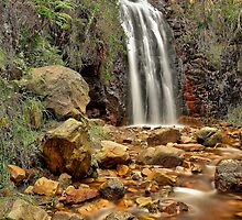 Waterfall Gully by Mark Cooper