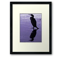 The Cormorant's Silhouette  Framed Print