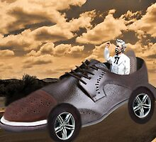 ▂ ▃ ▅ ▆ █ TRY DRIVING A MILE IN MY SHOE ~ PICTURE/CARD █ ▆ ▅ ▃  by ✿✿ Bonita ✿✿ ђєℓℓσ