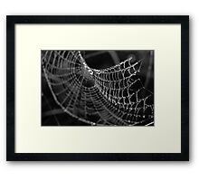 Fragile Beauty Framed Print