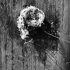 Rope... by John Callaway
