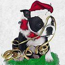 Xmas boston puppy by Cazzie Cathcart