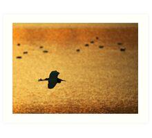 Golden Egret Art Print
