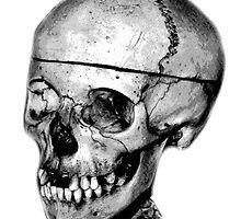 Halloween Spooky Skull. Digital Halloween Engraving Image by digitaleclectic