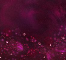 Fuchsia background with bubbles and bokeh by Nika Lerman