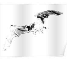 Vampire Bat Halloween Digital Engraving Image. Poster