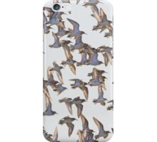 Flock of birds iPhone Case/Skin