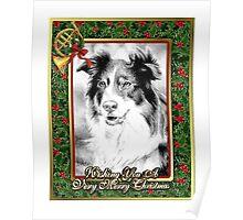 Australian Shepherd Christmas Poster