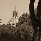 Nome di Maria from the Capitoline Hill by Nigel Fletcher-Jones