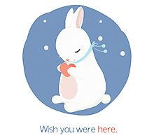 Bunny making a wish Photographic Print
