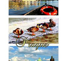 Prague Boat Trip by ©The Creative  Minds