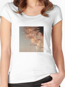 droplets of honey Women's Fitted Scoop T-Shirt