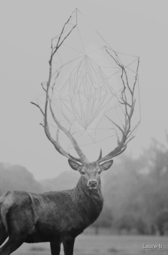 The deer by Laure-b