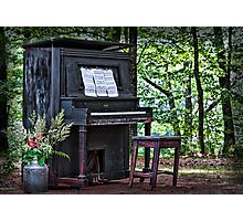 Clair de Lune Photographic Print