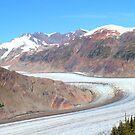 Panoramic Salmon Glacier by zumi