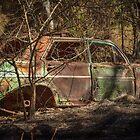 Burnt out EH Holden by Deborah McGrath
