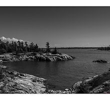 The Bay by Pete5