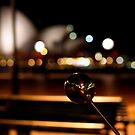 Sydney Opera House by JodieT
