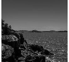 Rocky Shores by Pete5