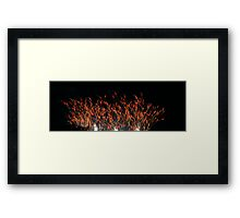 hot barley Framed Print