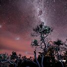 Milky Way over Boomers Bay  by Robert-Todd