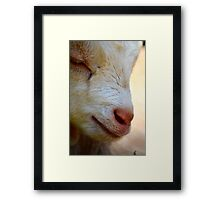 Close-up Kid Framed Print