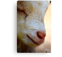 Close-up Kid Canvas Print