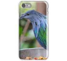 Multi Colored Poofy Bird iPhone Case/Skin