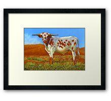 Longhorn In The Outback Framed Print