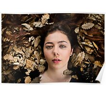 bed of leaves Poster