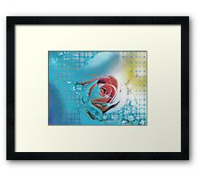 Much over-watered Framed Print