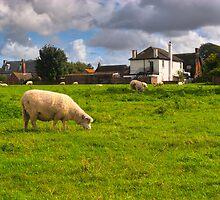 Idyllic Meadows - Avebury, English Countryside by Mark Tisdale
