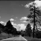 Road Trip by Sheryl Gerhard