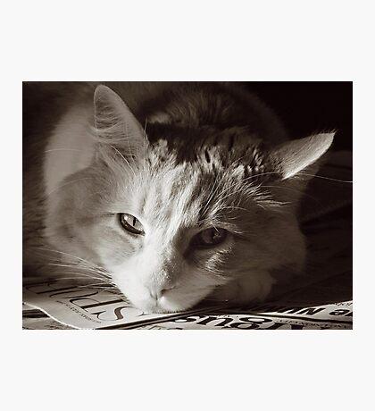 Read Me Photographic Print