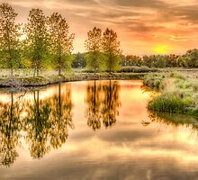 Sweet Summer Sleepy Water Sunset by Gregory J Summers