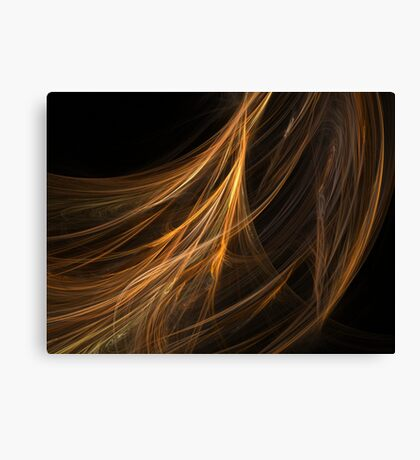 Brown Hair Fractal Canvas Print